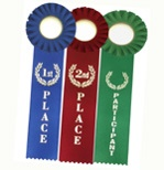 Award Ribbons Single Streamer
