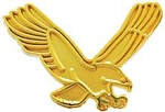 Eagle Gold Mascot Lapel Pin