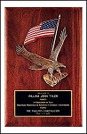 USA Flag Eagle Plaque 8x10