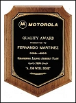 Walnut Award Plaque ~  available in 4 sizes