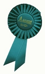Achievement Rosette Award Ribbon 3x6