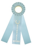 Honorable Mention Rosette Triple Steamer Ribbon 3