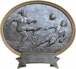 Soccer Female Oval Award Plaque 8