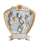 Basketball Female Recognition Shield Award Plaque